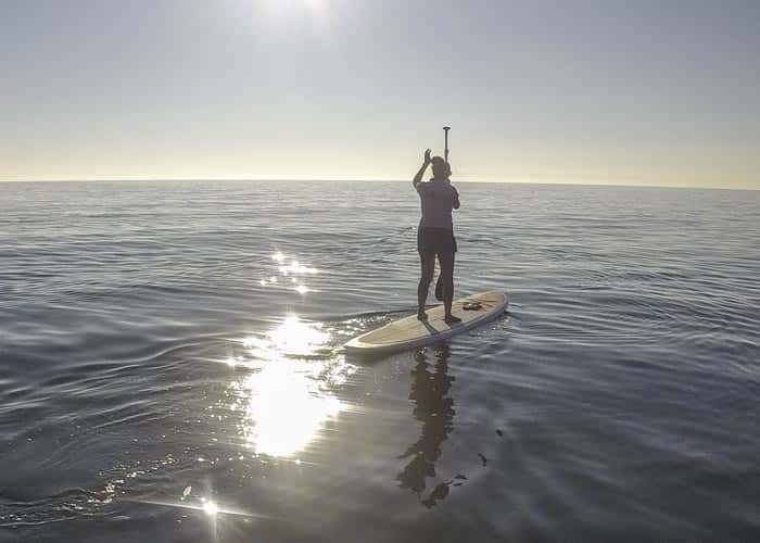 Paddle Boarding at Sunset - Ocean Monkeys Paddle Boards